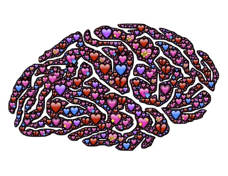 brain-619060_1280